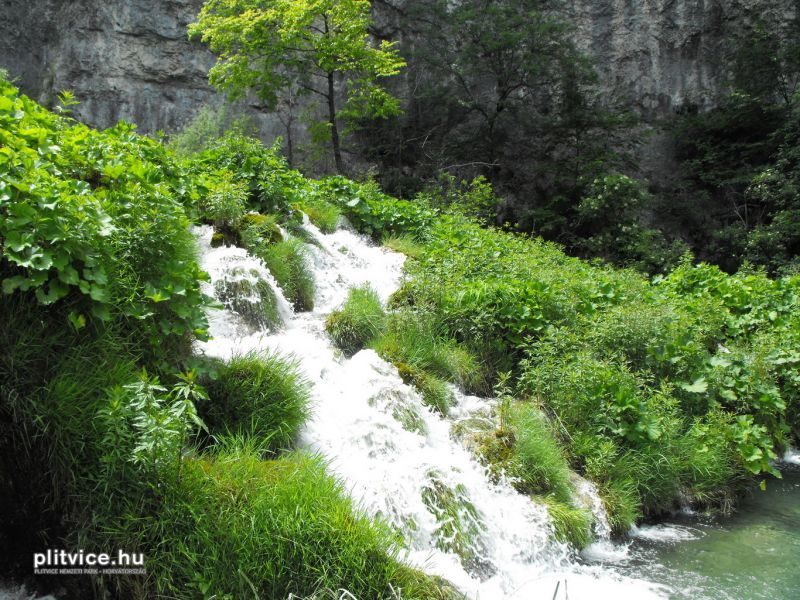 Plitvice_NP_Horvatorszag_Croatia_0131 (2)