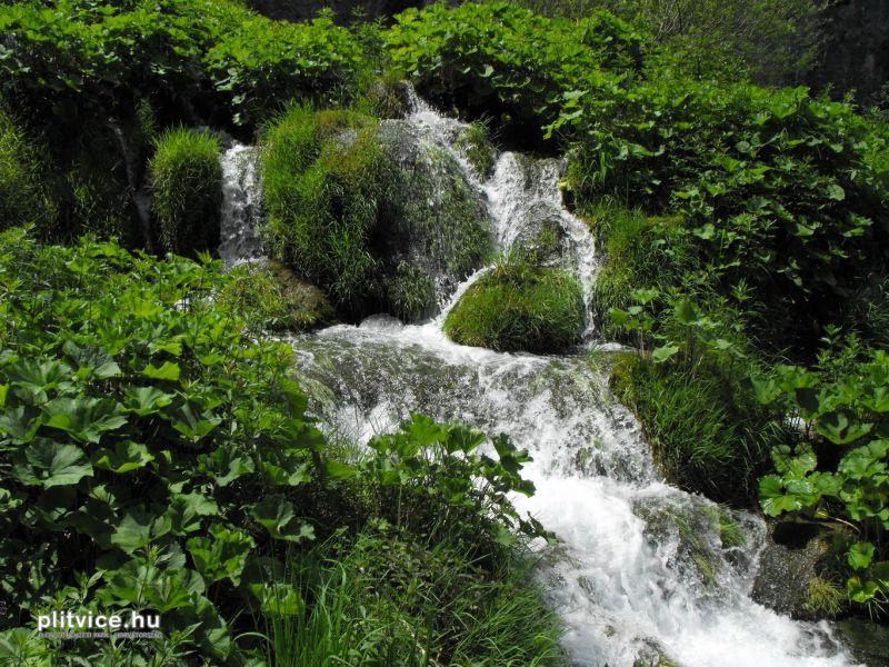 Plitvice_NP_Horvatorszag_Croatia_0130 (2)