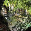 Plitvice_NP_Horvatorszag_Croatia_0024 (2)