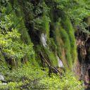 Plitvice_NP_Horvatorszag_Croatia_0035 (2)