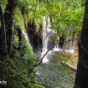 Plitvice_NP_Horvatorszag_Croatia_0028 (2)