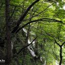 Plitvice_NP_Horvatorszag_Croatia_0038 (2)