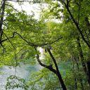 Plitvice_NP_Horvatorszag_Croatia_0048 (2)