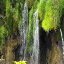 Plitvice_NP_Horvatorszag_Croatia_0088 (2)