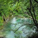 Plitvice_NP_Horvatorszag_Croatia_0030 (2)